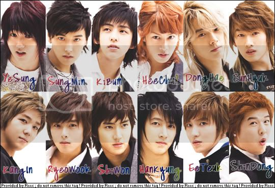 http://i944.photobucket.com/albums/ad283/phinksz/super-junior.jpg